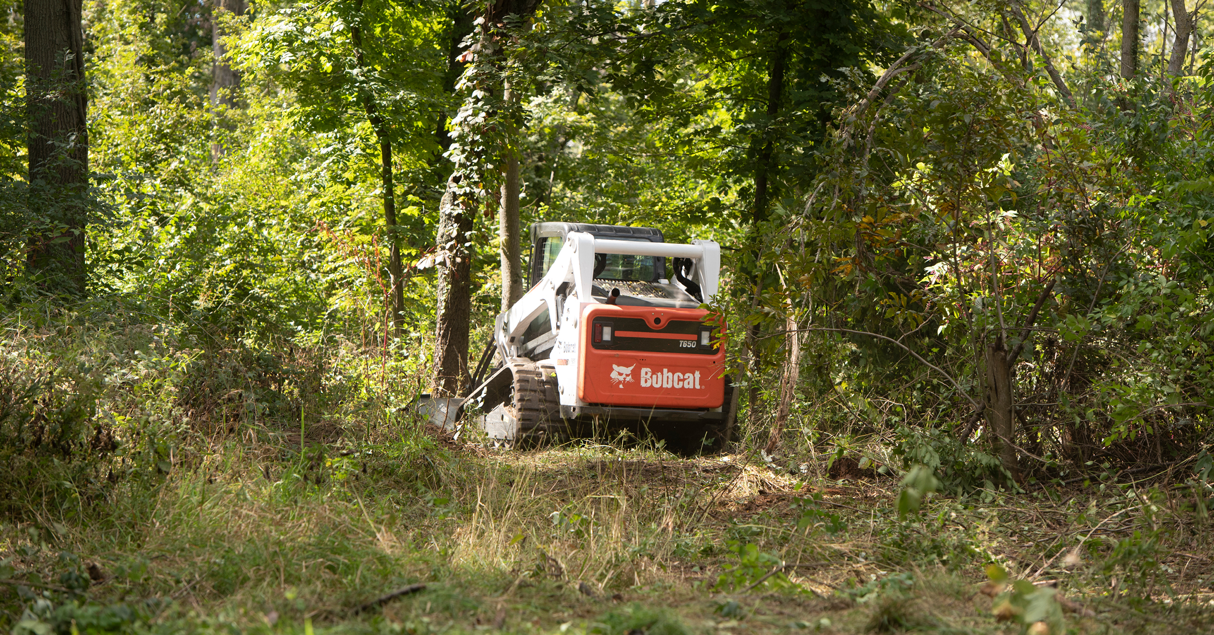 Bobcat T650 compact track loader moving through a wooded area.